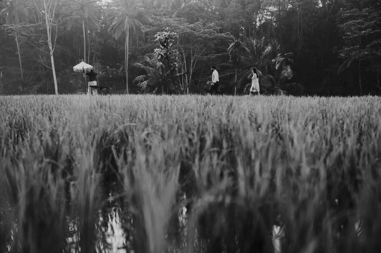 Andy & Lupe: Bali Proposal Photography at Tegalalang Rice Terrace 17