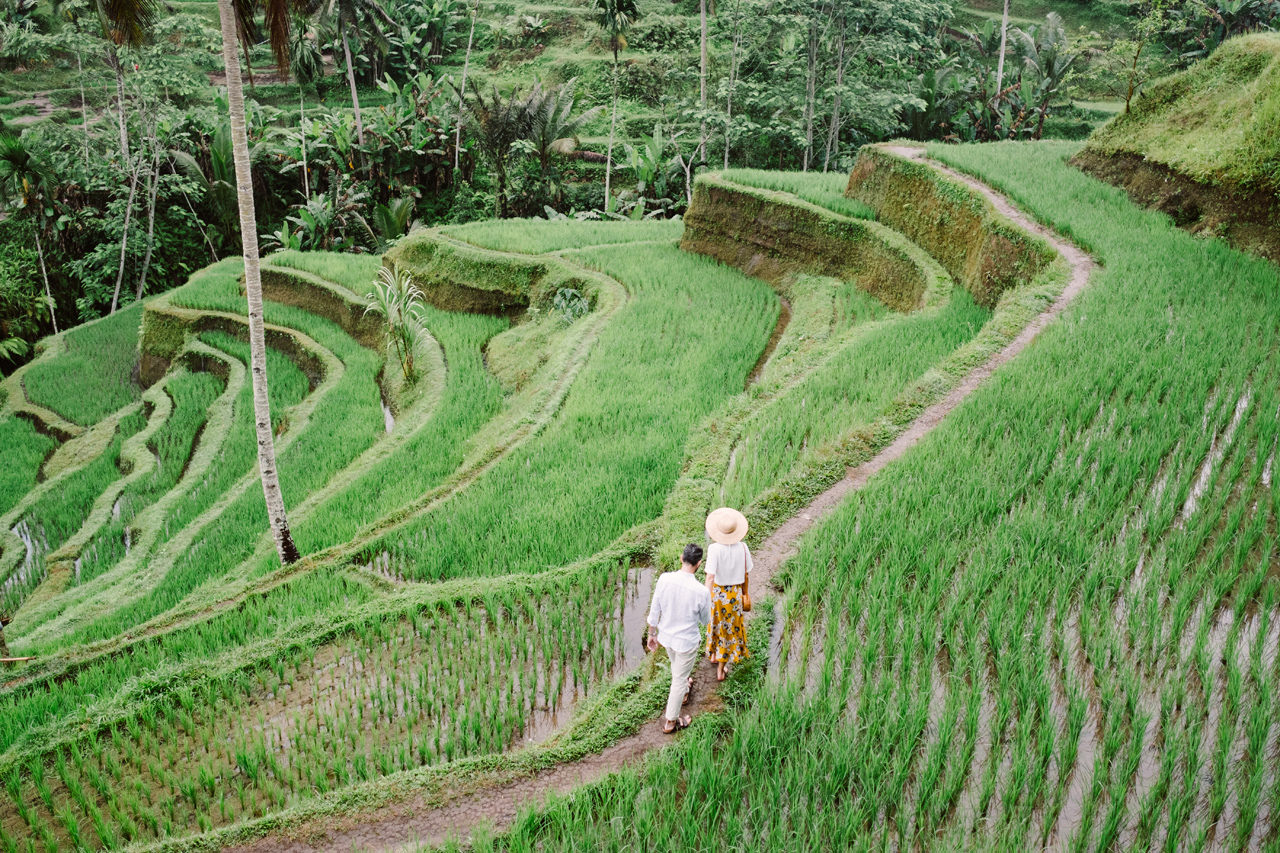 C&F: Casual Engagement Session in Tegalalang Rice Terraces Lush Greenery 5