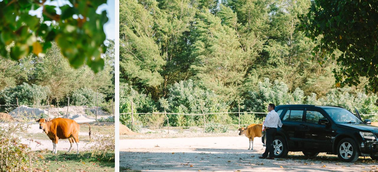 Cathy & Rob: Serangan Island Bali Pre-wedding Shoot 13