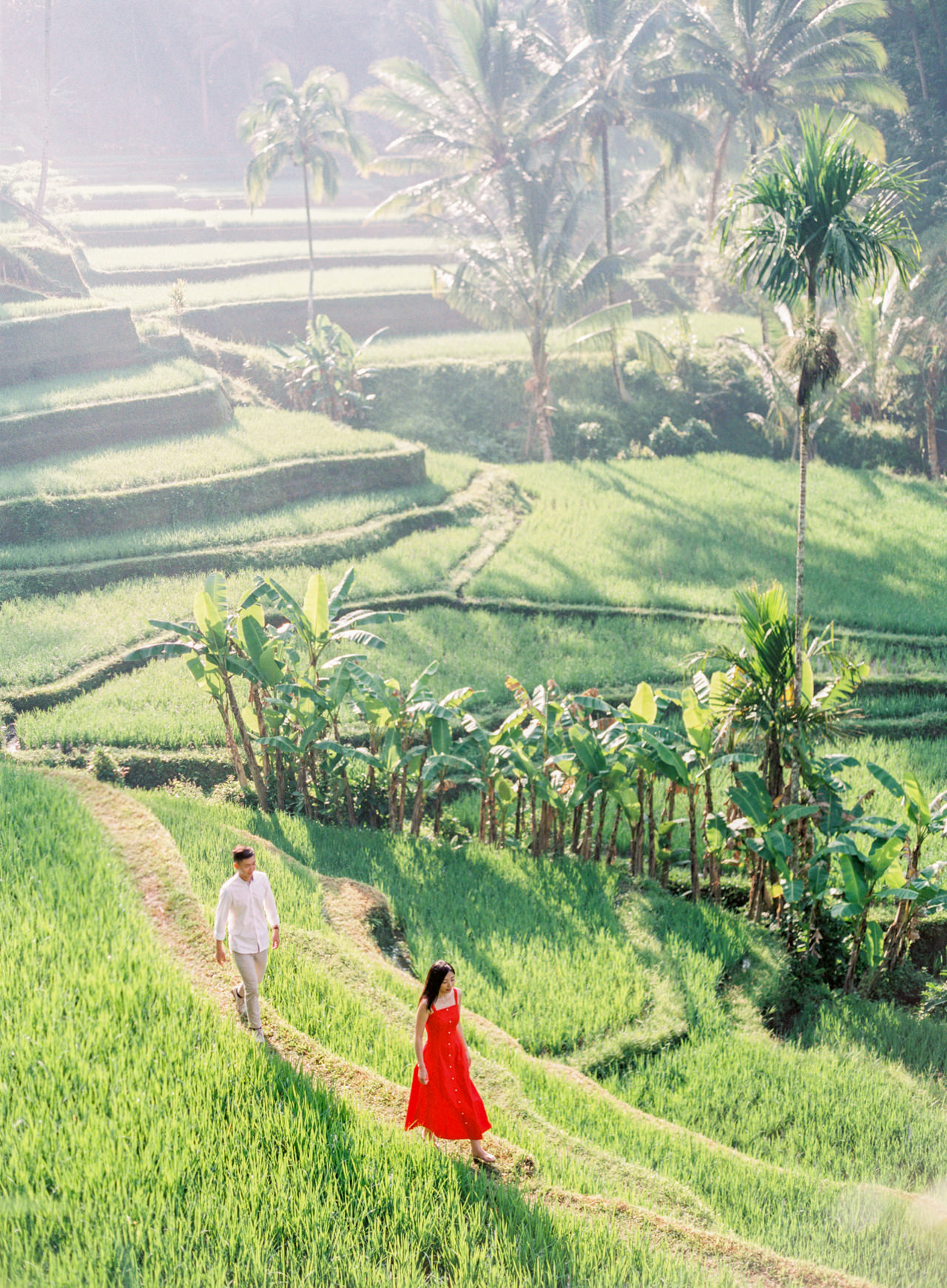 J&J: Fine Art Tegalalang Rice Terraces Engagement7