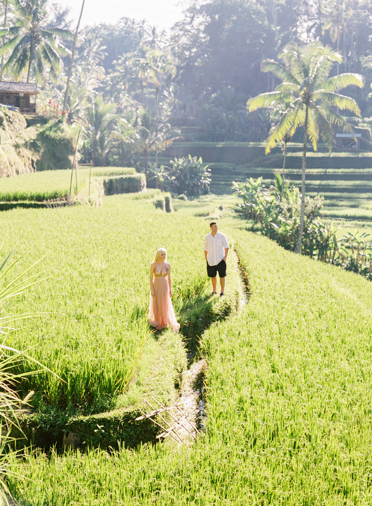 A&K: Magical Morning Photography at Tegalalang Rice Terrace 12
