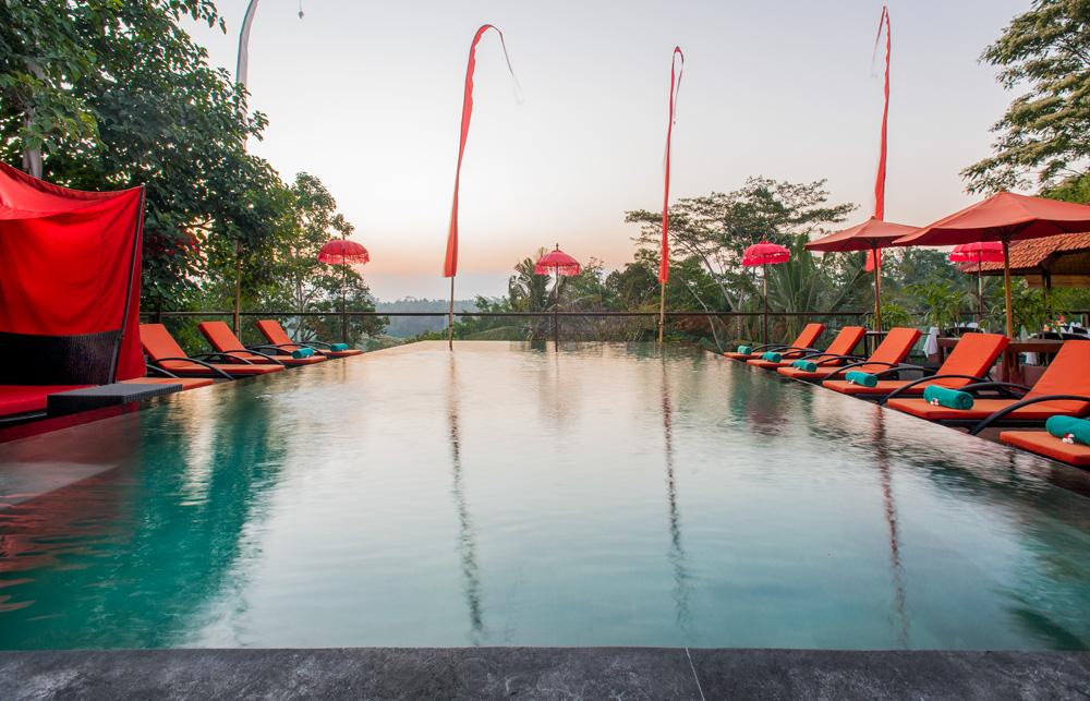 Kupu-Kupu Barong Bali 3