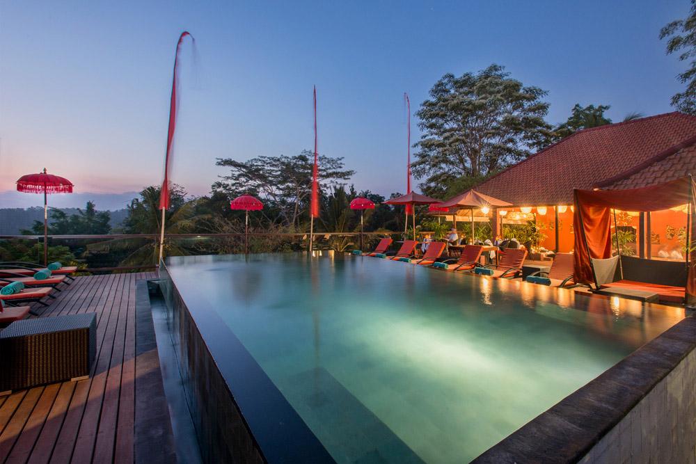 Kupu-Kupu Barong Bali 5