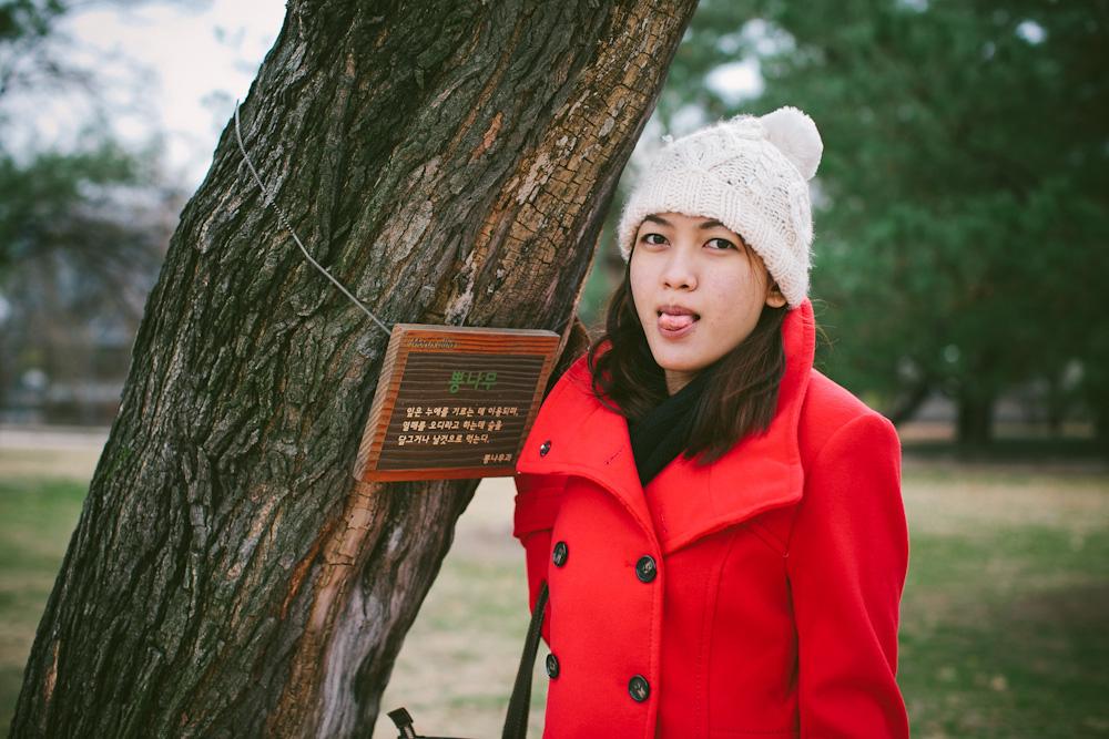 South Korea Travel 47