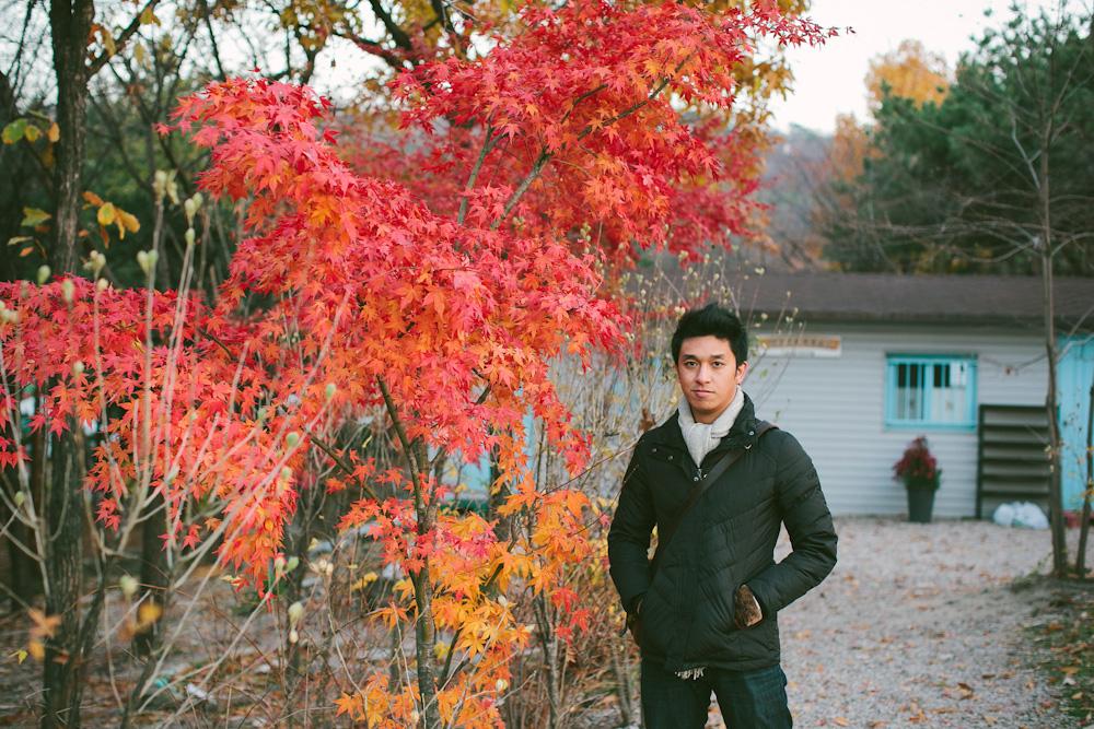 South Korea Travel 70