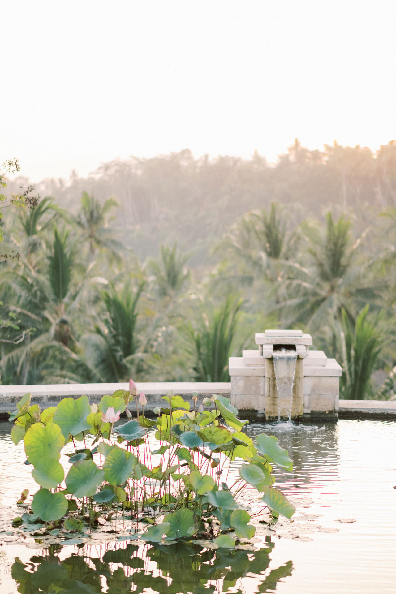 Relax and Intimate Four Seasons Ubud Elopement 31