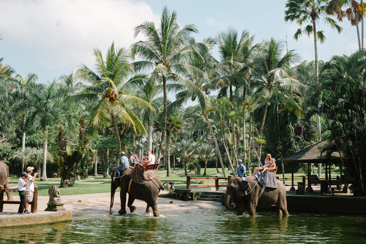 Nazli & Orhan: Honeymoon Photography in Ubud Bali 51