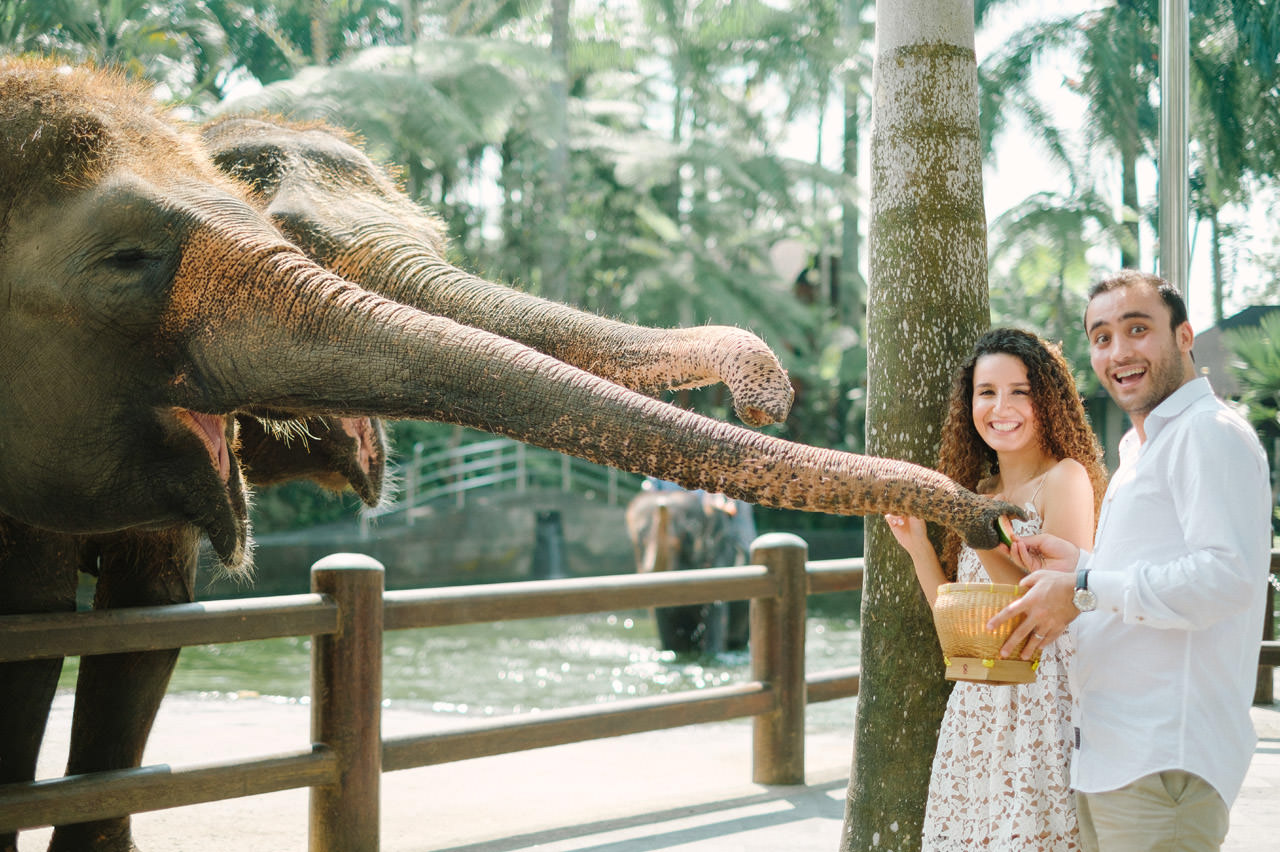 Nazli & Orhan: Honeymoon Photography in Ubud Bali 55