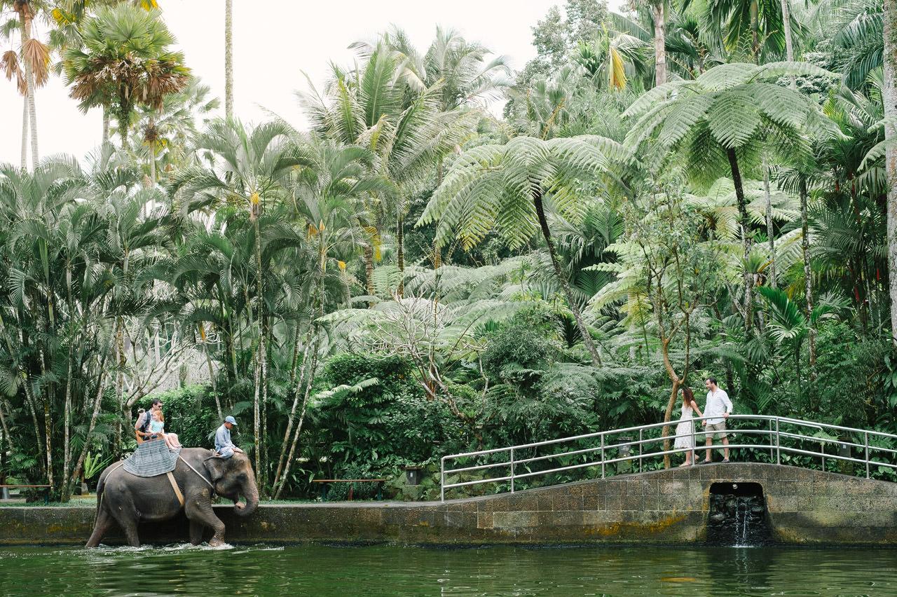 Nazli & Orhan: Honeymoon Photography in Ubud Bali 62
