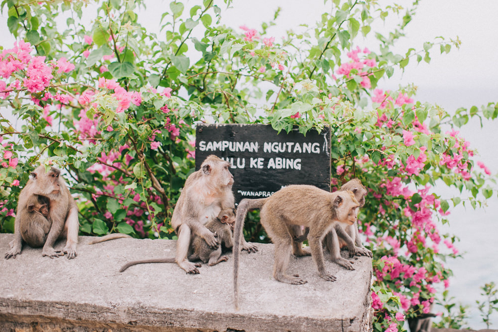 Rowena Family Reunion in Bali 7
