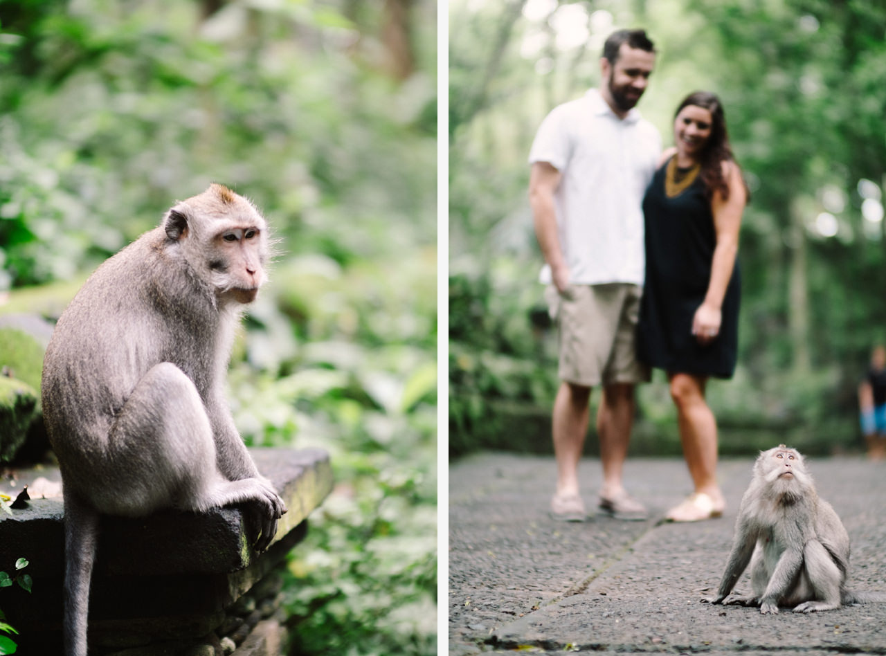 S&T: Bali Honeymoon Photography in Monkey Forest as Wedding Present 2