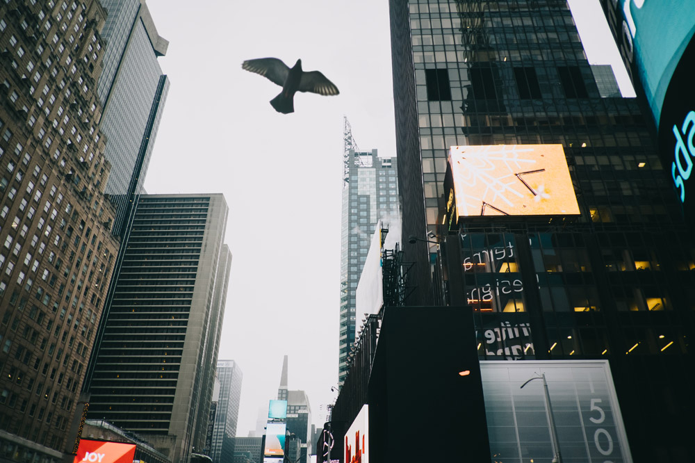 North America Trip 2015 - New York City 33