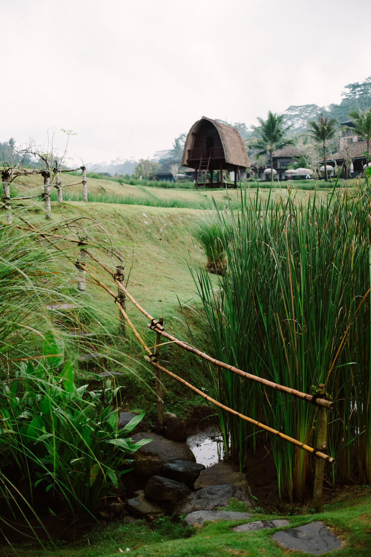 X&R: Bali Engagement Session at Mandapa Ubud, a Ritz Carlton Reserve 1