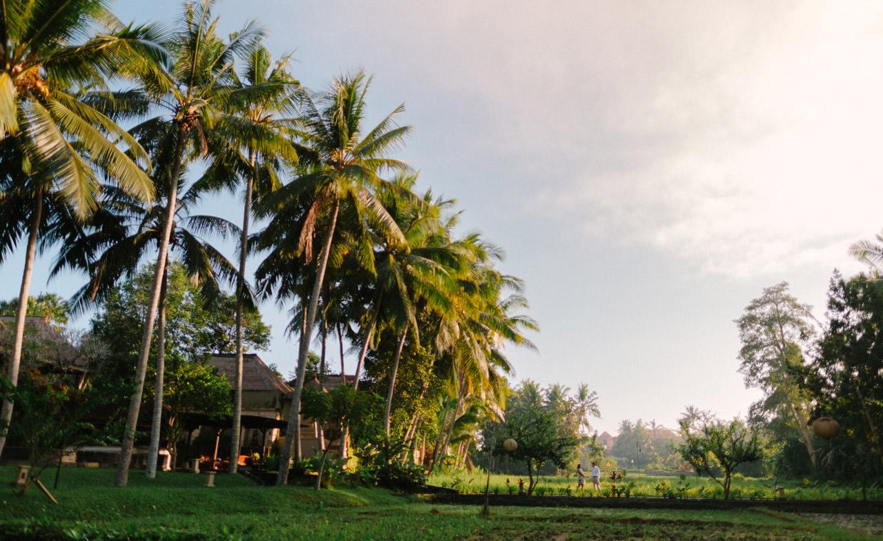 Engagement Photography in Ubud Bali 5