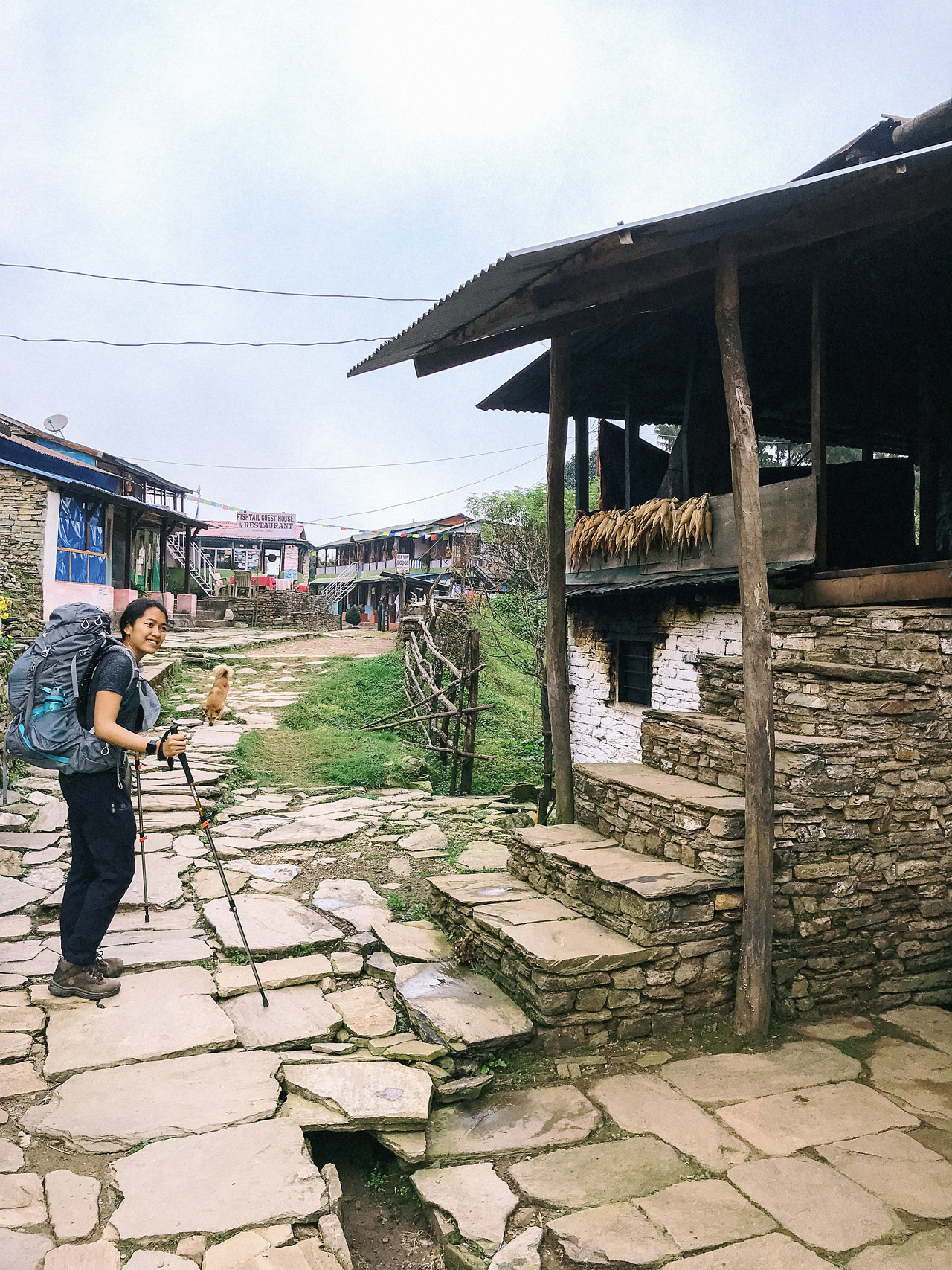 Nepal 2019 - Trekking Annapurna Base Camp 45