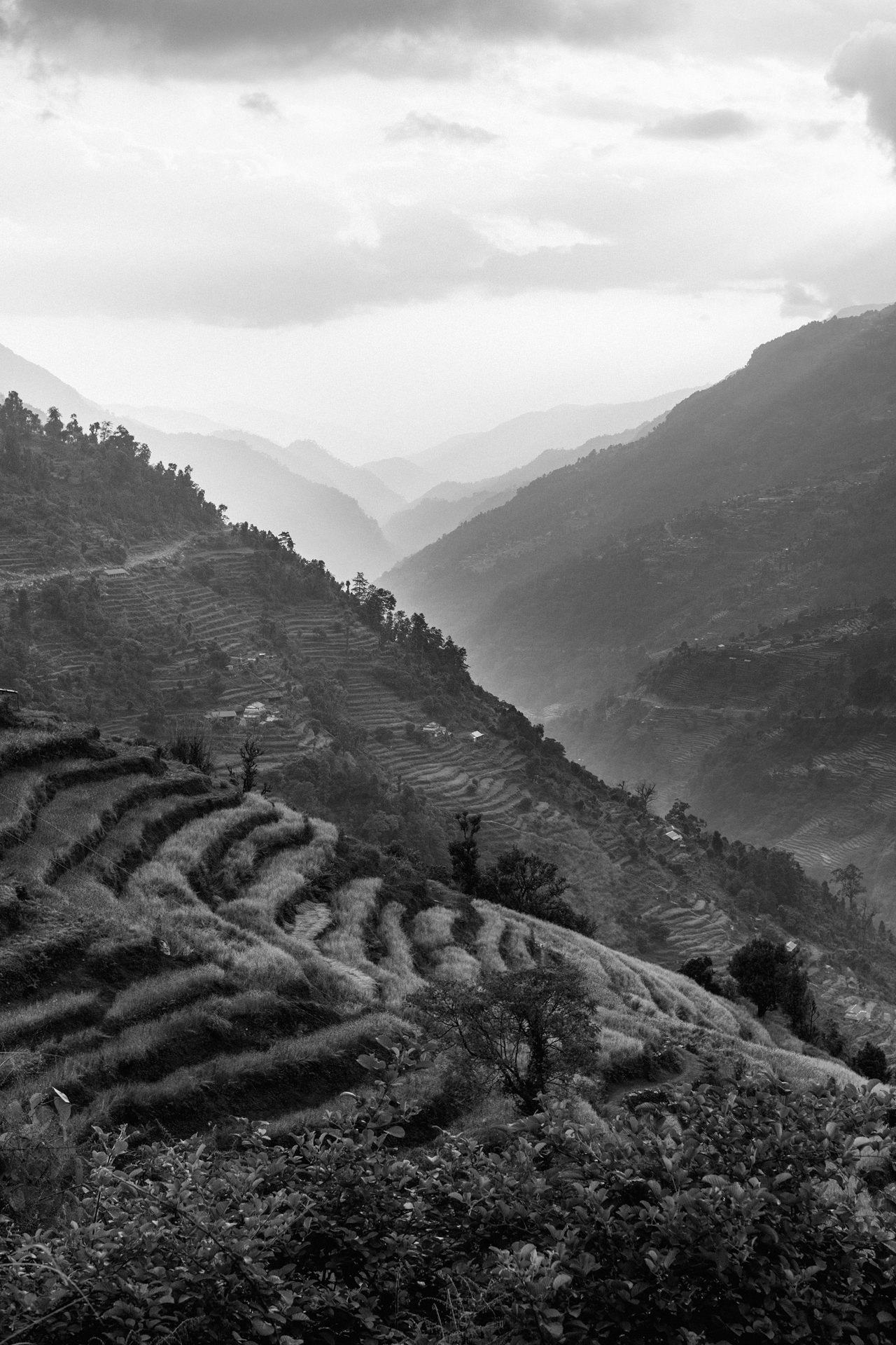 Nepal 2019 - Trekking Annapurna Base Camp 69