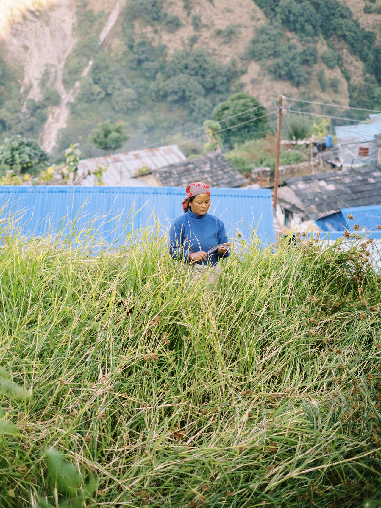 Nepal 2019 - Trekking Annapurna Base Camp 75
