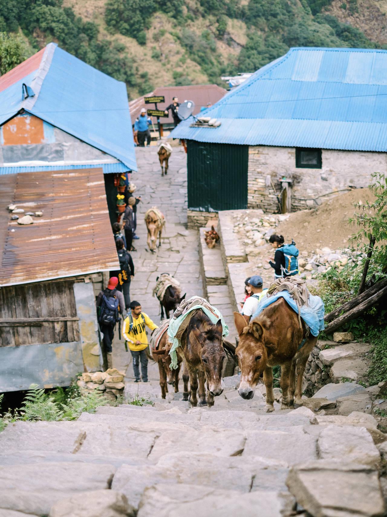 Nepal 2019 - Trekking Annapurna Base Camp 76