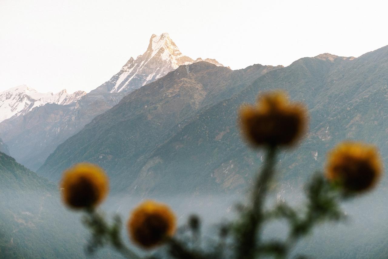 Nepal 2019 - Trekking Annapurna Base Camp 90