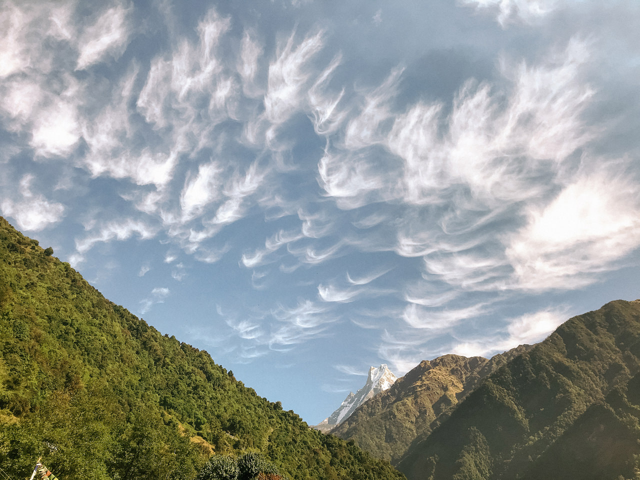 Nepal 2019 - Trekking Annapurna Base Camp 91