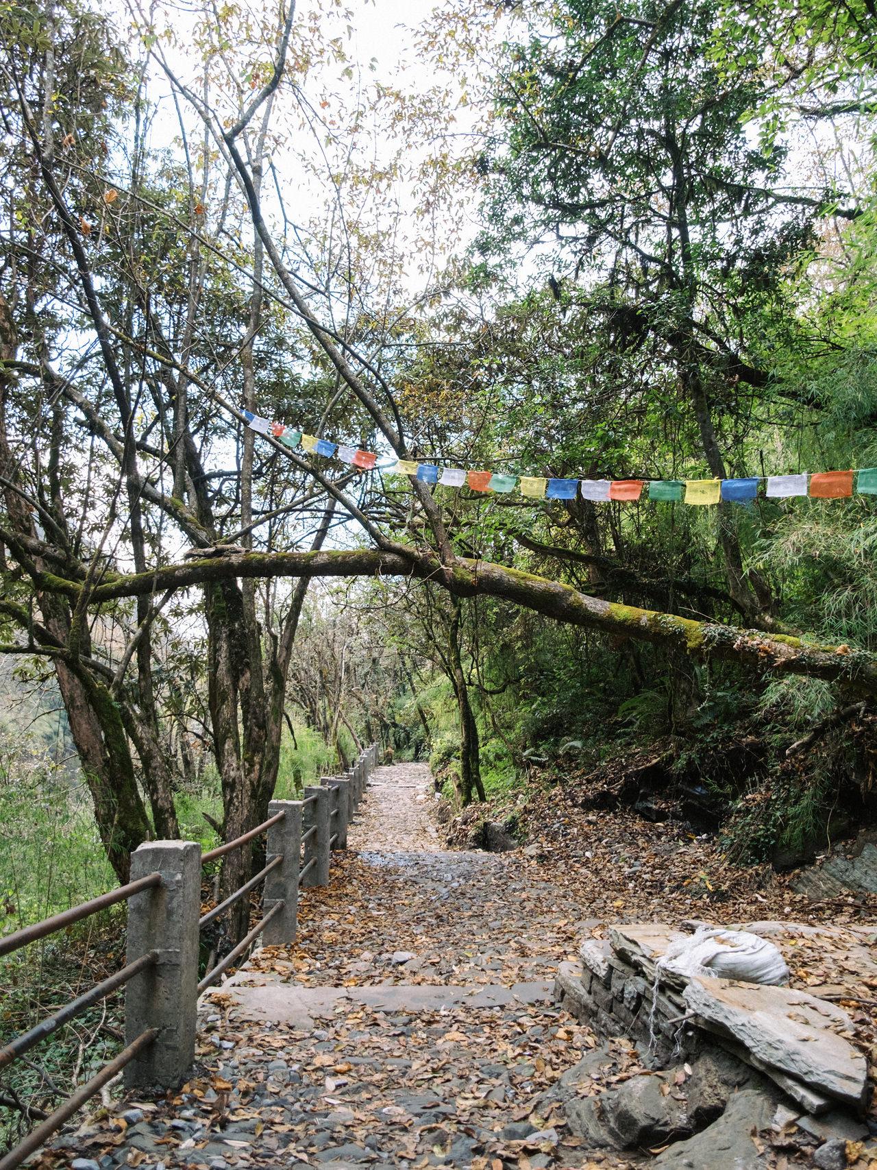 Nepal 2019 - Trekking Annapurna Base Camp 102