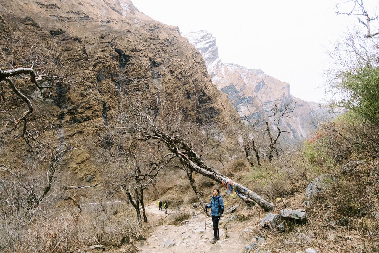 Nepal 2019 - Trekking Annapurna Base Camp 136